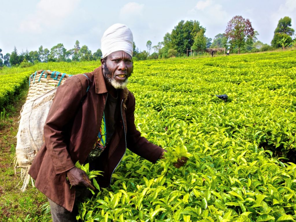 Money to the grassroots: Rethinking agricultural finance models