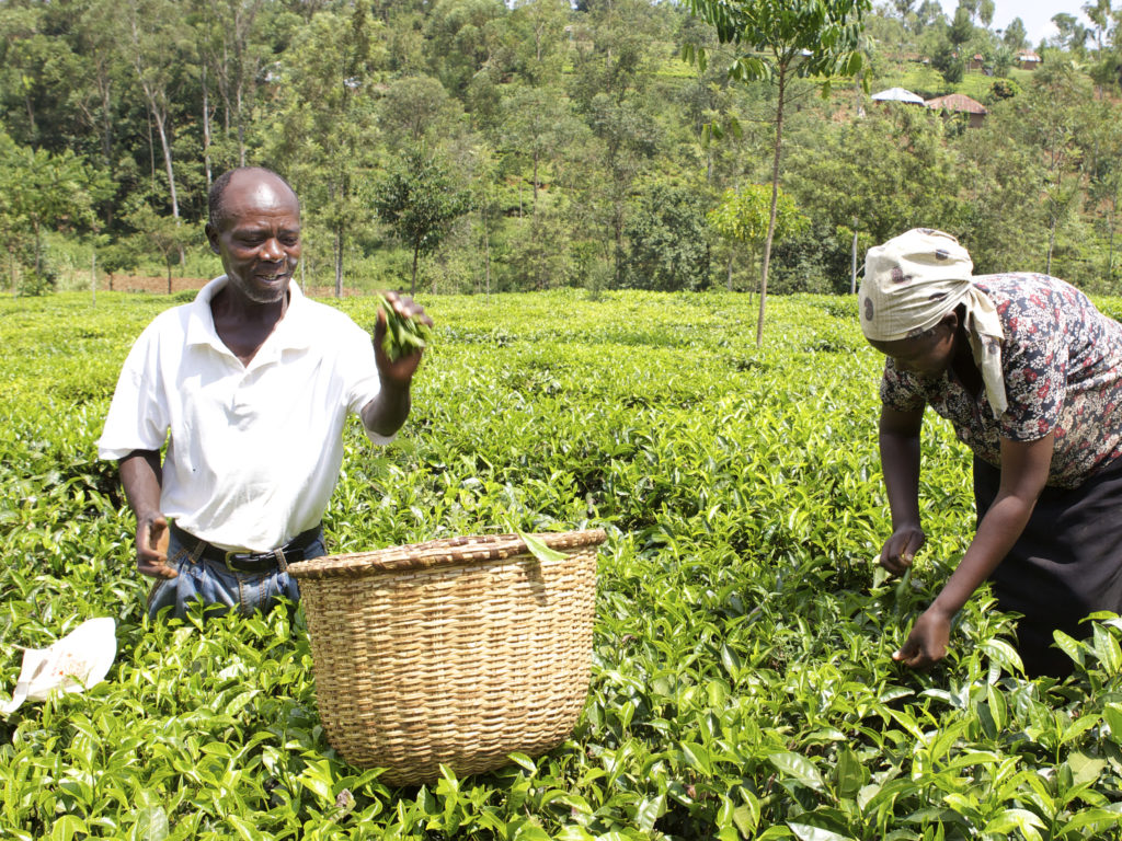 Exploring the economic potential of underserved segments of the Kenyan population