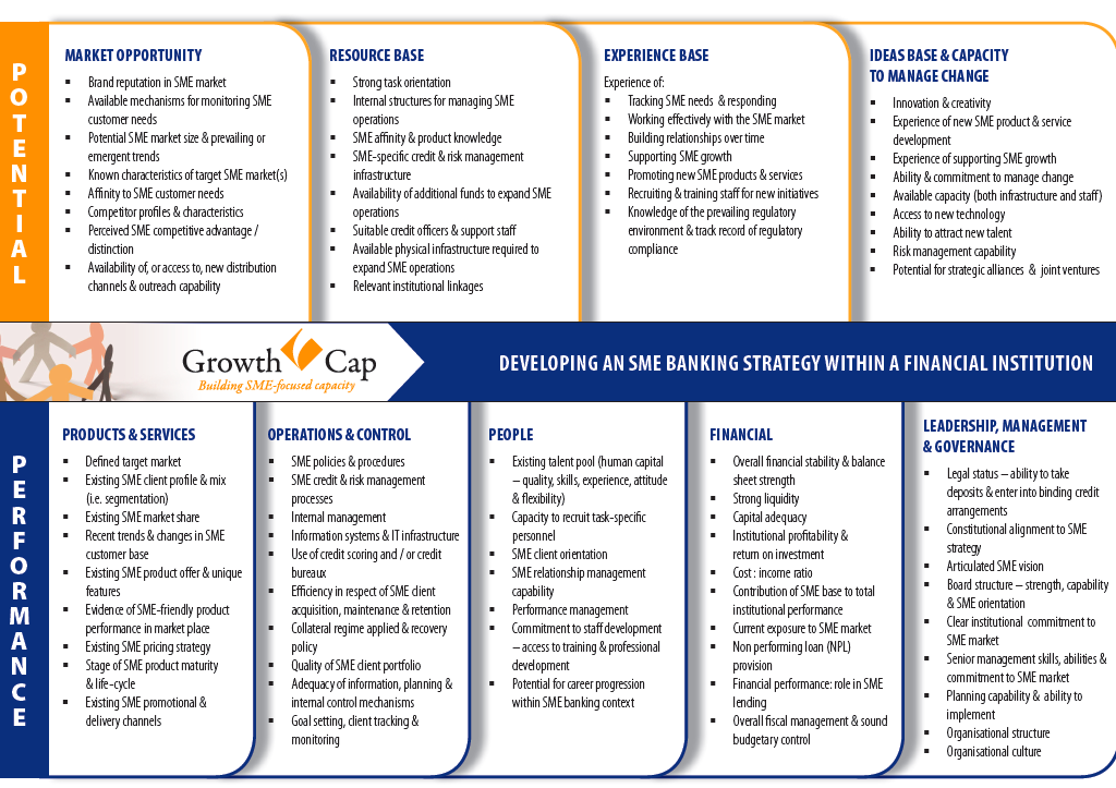 SME strategic diagnostic framework